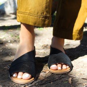 Shoes - 🆕//The Sarita// Black Cutout Flat
